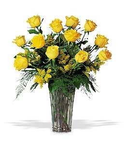 Yellow Roses Dozen